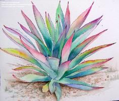 This article is an introduction on how to do some watercolor paintings of some of the simpler succulents (aloes, agaves etc. Some painting tips will be mentioned and some sample paintings will be. Watercolor Succulents, Watercolor Cactus, Watercolour Painting, Watercolours, Desert Art, Cactus Art, Botanical Wall Art, Plant Art, Art Floral