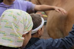 Adventure days for kids at the riding stable