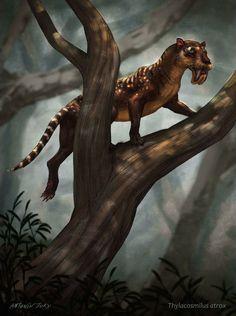 Primeval Thylacosmilus