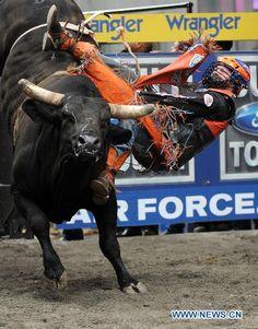 austin myers bull rider   Austin Meier rides a bull in Times Square in New York, the United ... Professional Bull Riders, Bull Riding, Times Square, The Unit, York