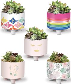 CERAMIC PLANTERS by Lady Jayne: Each footed ceramic planter can hold a small plant (not included) or other small items of your choice Ceramic Planters, Planter Pots, Love Natural, Glam Girl, Natural Garden, Small Plants, Cactus, Succulents, Hardware