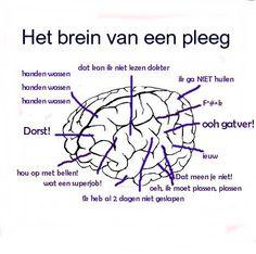 Verpleegkundig brein.