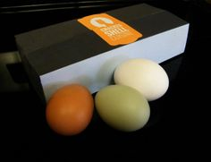 CSC egg carton.