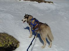 Khumbu ski touring in the Sierra Nevada