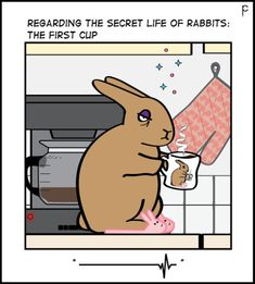 by Penny Collins Bunny Meme, Funny Bunnies, Baby Bunnies, Cute Bunny, Bunny Rabbit, Animals And Pets, Funny Animals, Cute Animals, Secret Life Of Rabbits