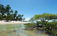 Foto da Praia de Carneiros