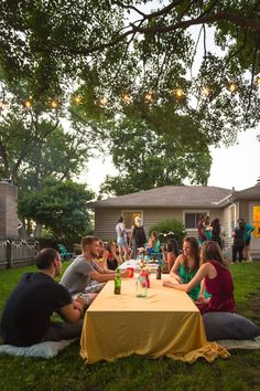 party balls and stringed lights | backyard party | backyard and