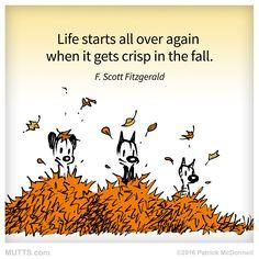 Re-post if you agree! #MUTTSofInstagram #fall #autumn #fscottfitzgerald #inspirationalquotes