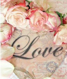 Uploaded by Find images and videos about love, pink and rose on We Heart It - the app to get lost in what you love. Live Love, Love Is All, Top Photos, Pictures, Deco Rose, Tumblr, Rose Cottage, Cottage Chic, Love Letters