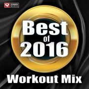 "2014 brought us Iggy Azalea, and a song to celebrate being ""Happy!"" This ""Best of"" collection brings together all of the hottest tracks from this past year into one nonstop fitness mix for you! Get ready to sweat and ""Shake It Off"" with this bra Best Songs Of 2016, Step Music, Workout Mix, Shut Up And Dance, Music Power, Shake It Off, Music Mix, Iggy Azalea, Playlists"
