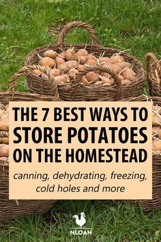 There are plenty of ways to store potatoes for the long term, and most don't require refrigeration. Dehydrate Potatoes, Canned Potatoes, Dried Potatoes, Storing Potatoes, Natural Cleaning Recipes, Natural Cleaning Products, Emergency Preparedness Food Storage, Potato Storage, How To Store Potatoes