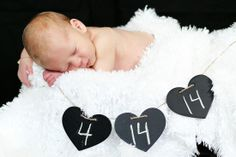 Newborn portraits. Angelee Arceo Photography