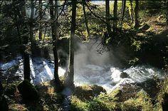Les cascades du Seebach - #Alsace