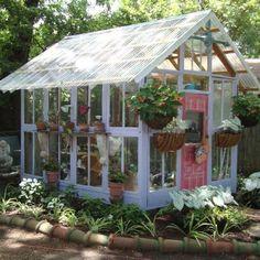 White Greenhouse Idea