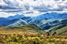 Baviaanskloof mountains - Buscar con Google
