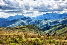 Baviaanskloof mountains - Buscar con Google