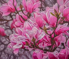 """Fiona Craig, 'Magnolias 1', oil on canvas, 36"""" x 42"""". PRINTS IN MANY SIZES available - see www.FionaCraig.com ."""