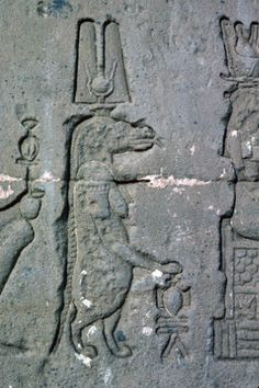 Egypt Dendera relief of a Crocodile on east wall of the Temple of Hathor