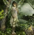 Fairies - Fairies Photo (24898642) - Fanpop