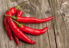 Q: I grew a batch of red Spanish pepper plants out of the seeds from a supermarket pepper. Against all expectations it gave me about 60 peppers in total. I want to pickle them, but what is the best way to do it without loosing the punch they give? Sent by Martijn