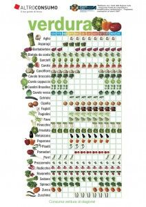 Vegetable Chart, Vegetable Garden, Healthy Life, Healthy Eating, Seasonal Food, Happy Foods, Green Life, Food Diary, Agriculture