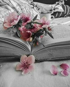 Raindrops and Roses: Photo Book Wallpaper, Flower Wallpaper, Flower Aesthetic, Book Aesthetic, Aesthetic Backgrounds, Aesthetic Wallpapers, Color Splash, Raindrops And Roses, Book Flowers