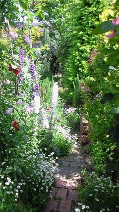 english garden English Cottage Garden ~How I love those tiny, wandering paths in huge, fragrant, beautiful gardens. Small Cottage Garden Ideas, Cottage Garden Design, Backyard Cottage, Small Gardens, Outdoor Gardens, Farm Gardens, English Country Gardens, Small English Garden, Narrow Garden