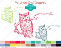 OWL Clipart Commercial Use Clipart Perched Owl on by ClipArtBrat