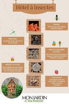 DIY: making an insect hotel Permaculture, Bug Hotel, Hotels, Diy Crafts For Kids, Own Home, Diy Art, Activities For Kids, Nature Photography, About Me Blog