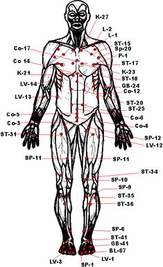 Vital Pressure Points picture Krav Maga Self Defense, Self Defense Moves, Self Defense Martial Arts, Martial Arts Styles, Martial Arts Techniques, Kyokushin Karate, Martial Arts Workout, Hapkido, Pressure Points