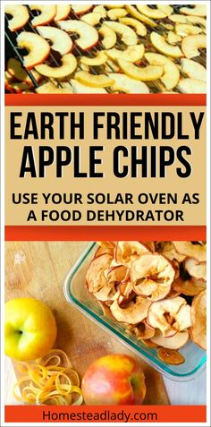 Use your solar oven as a food dehydrator to make healthy baked apple chips l Solar ovens are a free-to-use food dehydrators that save money, make healthy snacks and preserve the apple harvest l Homesteadlady.com #solaroven #apples #healthysnack #foodstorage Healthy Baking, Healthy Snacks, Healthy Recipes, A Food, Food And Drink, Solar Oven, Dried Vegetables, Apple Chips, Apple Harvest