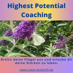 Coaching, Plants, Make It Happen, Counseling, Life, Training, Plant, Planting, Planets