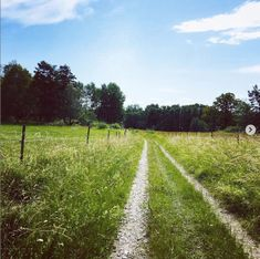 Vandra i Stockholm – 10 vackra dagsturer   Baaam Stockholm, Vineyard, Country Roads, Outdoor, Vineyard Vines, The Great Outdoors, Outdoors