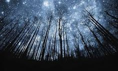 Hasil gambar untuk gambar pemandangan malam yang indah