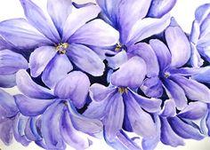 Hyacinth Bells