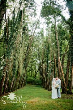 Mystical Wooded Area At A Private Estate Wedding In Virginia Photography By Winchester Va Photographers Swadley Studio