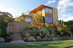 front slope with grasses and perennials, Banyon Tree Design Studio in Seattle, WA