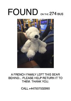 Found on 01 Jan. 2016 @ 274 bus by Primrose Hill London NW1. A french family left this bear on the 274 bus on New Year's Day Visit: https://whiteboomerang.com/lostteddy/msg/t3sde5 (Posted by Jason on 02 Jan. 2016)
