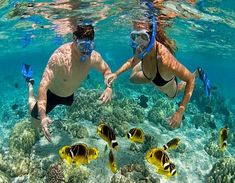 Snorkeling Activity is Water Sports Activities to enjoy Snorkeling in Bali. Snorkeling (British spelling: snorkeling) is the practice of swimming on or through a body of water while equipped with a diving mask, a shaped tube called a snorkel and usually swim fins