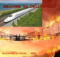 Forest fires, a bullet train, and taxes - lots of taxes!