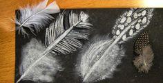 Mrs Crosbie: drawing