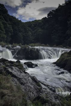 Cenarth Falls South Wales By Gaynor Roberts