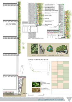17detalle fachada vegetal