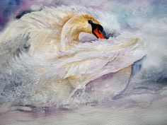 Watercolour and Gouache: White Swan, by Yvonne Harry
