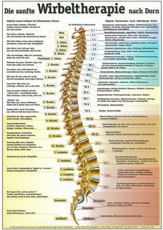 Osteodouce ( Remote Somatic Balancing ) is a powerful healing method to harmonize the body structure without physical contact using the Universal Energy. Treatments and Private courses online via Skype. Dorn Therapie, Health And Wellness, Health Tips, Craniosacral Therapy, All About Pregnancy, Online Training Courses, Migraine Relief, Physical Pain, Medical Advice