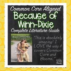Because of Winn-Dixie - 133 pages - Lessons, Activities, Questions