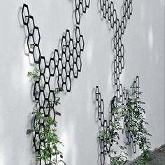 Flora: art trellis