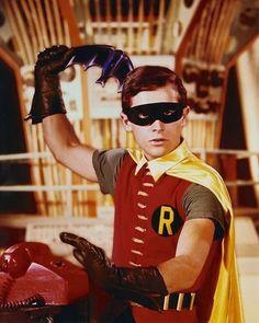 Robin, The Boy Wonder From Batman.