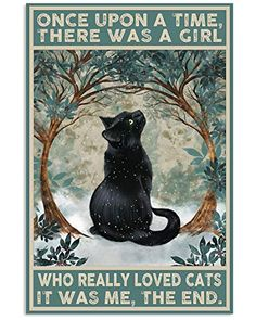 Crazy Cat Lady, Crazy Cats, I Love Cats, Cool Cats, Do Love, Cat Posters, Funny Posters, Movie Posters, Arte Obscura