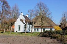 Zuidhorn, Julianalaan. hoeve Scheeringa, Rijksmonument uit 1811
